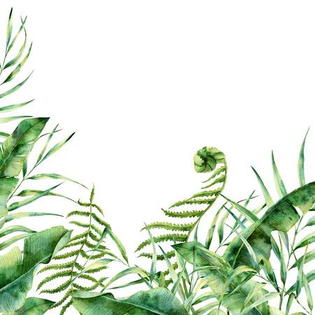 水彩のエキゾチックな花の境界線。手描きのヤシの木と熱帯のフレームの葉します、白い背景で隔離、シダの支店、バナナ、マグノリアの葉。結婚