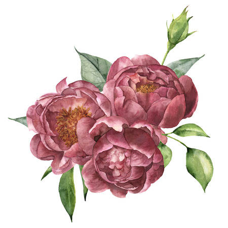 Watercolor bouquet of peony and greenery. Hand painted floral composition with flowers and leaves isolated on white background. Vintage botanical illustration for design.
