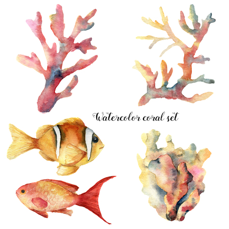 Watercolor set with coral and fish. Hand painted underwater branches and reef fish isolated on white background. Tropical sea life illustration. For design, print or background