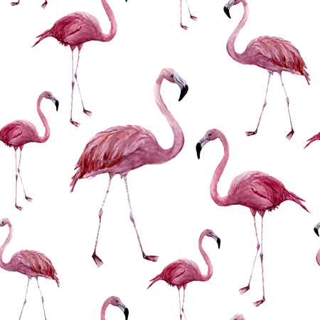 Watercolor flamingo seamless pattern. Exotic wading bird ornament isolated on white background. Tropical natural illustration. For design, prints or background. Reklamní fotografie
