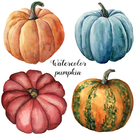 Watercolor pumpkins. Hand painted red, blue, orange and orange with green stripes pumpkins isolated on white background. Botanical illustration for design. Halloween print