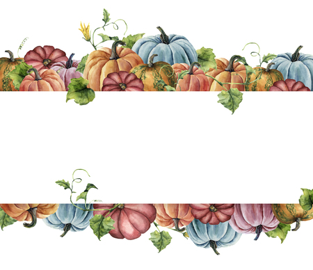 Watercolor autumn harvest card. Hand painted border with bright pumpkins with leaves and flowers isolated on white background. Botanical illustration for design