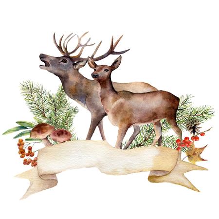 水彩の秋の森ラベル。手は、白い背景で隔離赤い鹿、きのこ、ナナカマド、ベリー、パイン ブランチでリボンを塗装しました。植物イラスト デザイン。 写真素材 - 83475004