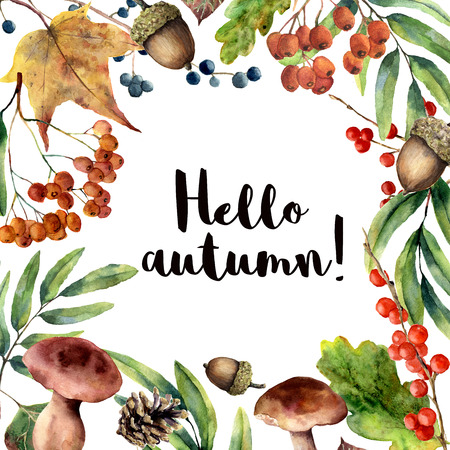 Watercolor Hello autumn frame. Hand painted floral frame with rowan, mushrooms, berries,acorn, pine cone, fall leaves isolated on white background. Forest illustration for design. Botanical print.