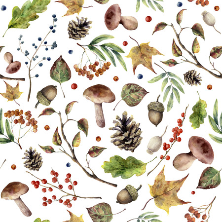Watercolor autumn forest pattern. Hand painted mushroom, rowan, fall leaves, tree branch, pine cone, berry and acorn isolated on white background. Nature illustration for design.