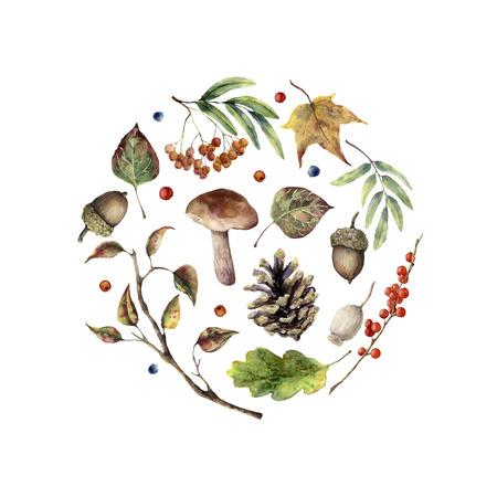 Aquarel herfstprint. Handgeschilderde paddestoel, rowan, bladeren vallen, vertakking van de beslissingsstructuur, dennenappel, bessen en acorn geïsoleerd op een witte achtergrond. Aardillustratie voor ontwerp. Stockfoto