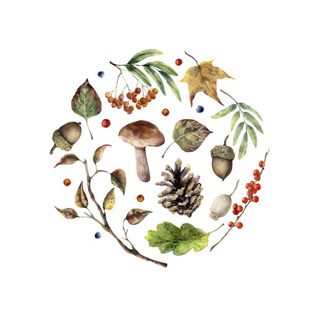 Watercolor autumn print. Hand painted mushroom, rowan, fall leaves, tree branch, pine cone, berry and acorn isolated on white background. Nature illustration for design. Stock Photo