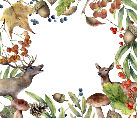 Watercolor autumn forest frame. Hand painted floral frame with deers, rowan, mushrooms, berries,acorn, pine cone, fall leaves isolated on white background. Forest border for design. Botanical print.