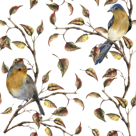 Watercolor seamless pattern with robin sitting on tree branch. Autumn illustration with birds and fall leaves isolated on white background. Nature print for design.