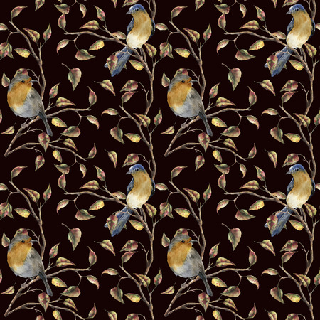 Watercolor pattern with robin sitting on tree branch. Autumn illustration with birds and fall leaves isolated on black background. Nature print for design.