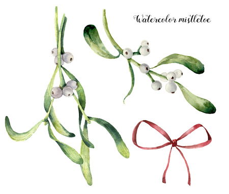 Watercolor mistletoe set. Hand painted mistletoe branch with white berry and red bow isolated on white background. Christmas botanical clip art for design or print. Holiday illustration.
