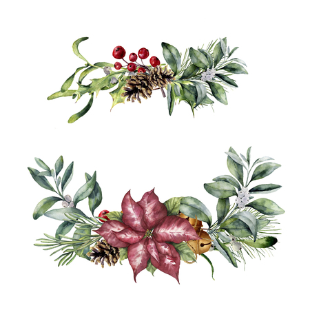 Watercolor Christmas floral decor. Hand painted christmas plant isolated on white background. Botanical illustration for design or print. Stock Photo