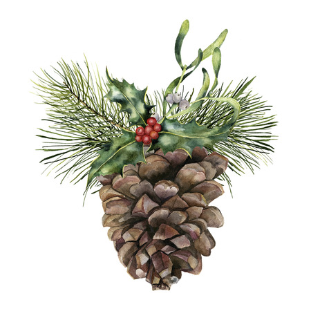 Watercolor pine cone with Christmas decor. Hand painted pine cone with christmas tree branch, holly and mistletoe isolated on white background. Botanical clip art for design or print. Holiday plant. Stock Photo