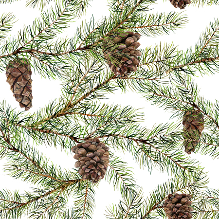 Watercolor pine tree seamless pattern. Hand painted fir branch with pine cone isolated on white background. Botanical illustration for design. Nature print