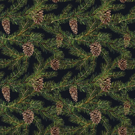 Watercolor pine tree pattern. Hand painted fir branch with pine Stock fotó