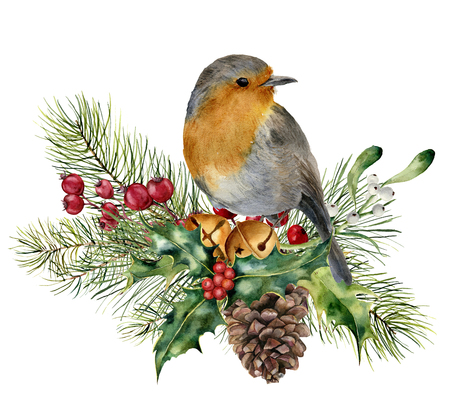 Watercolor Christmas composition with bird. Hand painted robin with fir and berry branch, mistletoe, holly, pine cone and bells isolated on white background. Holiday card