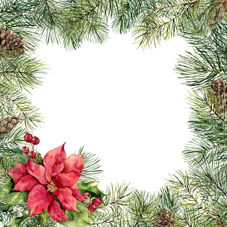 Watercolor Christmas floral frame with poinsettia. Hand painted Christmas tree branch, pine cone, poinsettia, holly, mistletoe and barry isolated on white background. Holiday border for design