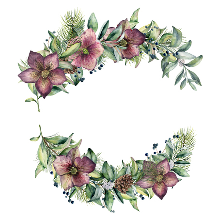 Watercolor floral composition with hellebore flowers. Hand painted snowberry, fir branch and leaves, berry, succulent isolated on white background. Winter floral bouquet for design. Holiday print Stock Photo