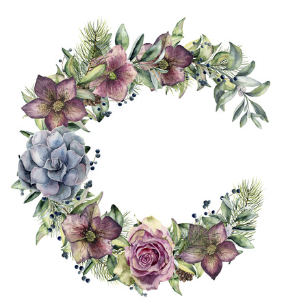 Watercolor floral wreath with hellebore flowers and rose. Hand painted snowberry, fir branch and leaves, berry, succulent isolated on white background. Winter floral bouquet for design. Holiday print Stock Photo