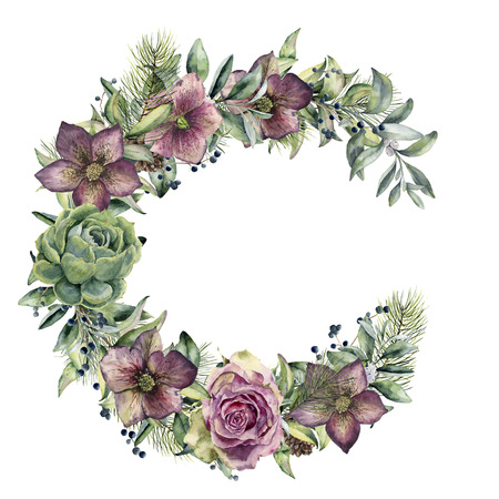 Watercolor floral wreath with hellebore flowers. Hand painted snowberry, fir branch and leaves, berry, succulent, rose isolated on white background. Winter floral bouquet for design. Holiday print Stock Photo