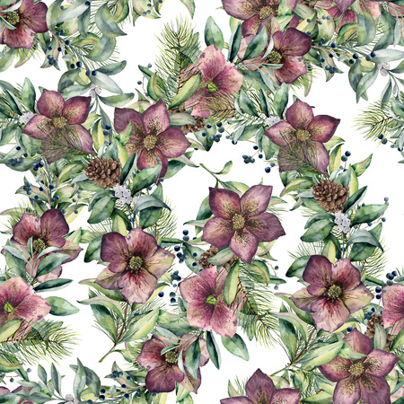 Watercolor seamless pattern with hellebore flowers. Hand painted snowberry, fir branch and leaves, berry isolated on white background. Winter floral ornament for design and fabris. Holiday print. Stock fotó
