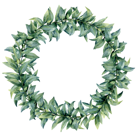 Watercolor eucalyptus elegant wreath. Hand painted exotic leaves and branch isolated on white background. Botanical floral illustration. For design or print. Stock Photo