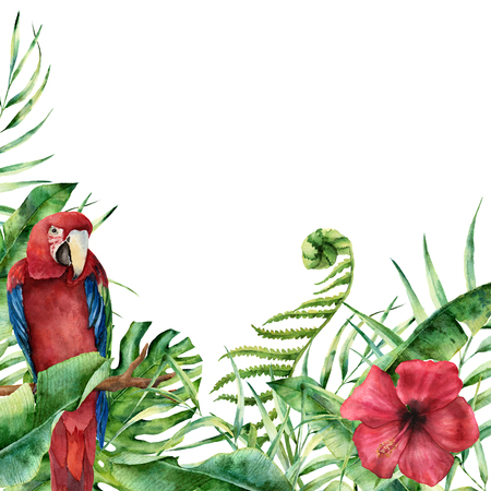 Watercolor exotic floral card with parrot. Hand painted tropical