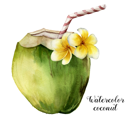 Watercolor coconut with plumeria flowers. Hand painted exotic drink with striped tube and floral decor isolated on white background. Tropical cocktail with a straw. Food illustration for design