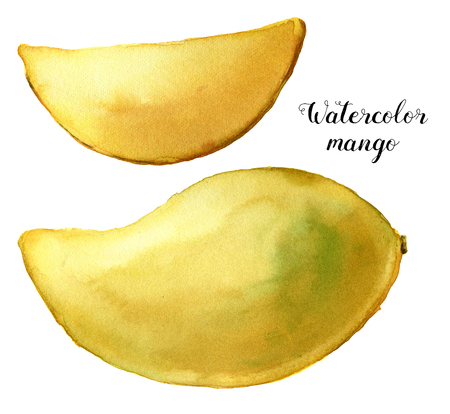 Watercolor yellow mango set. Hand painted tropical fruits isolated on white background. Botanical food illustration for design or print