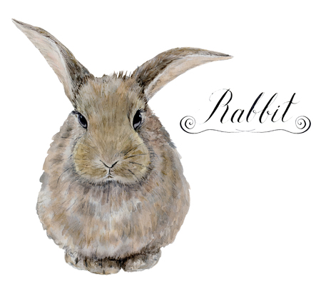 Watercolor rabbit. Cute realistic illustration for kids design, easter design or prints. Stok Fotoğraf
