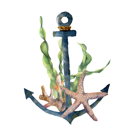 Watercolor anchor with laminaria branch and coral reef. Hand painted underwater illustration with starfish, seaweed leaves isolated on white background. Nautical illustration for design.