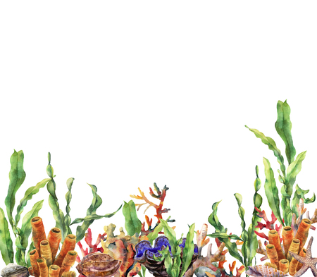 Watercolor coral reef border. Hand painted underwater illustration with laminaria branch, starfish, tridact, mollusk and shell isolated on white background. Nautical illustration for design. Stock Illustration - 95626585