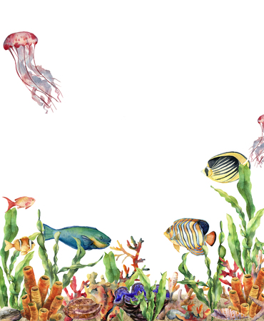 Watercolor coral reef border and fish. Hand painted underwater illustration with laminaria branch, starfish, tridact, mollusk and shell isolated on white background. Nautical illustration for design. Stock Photo