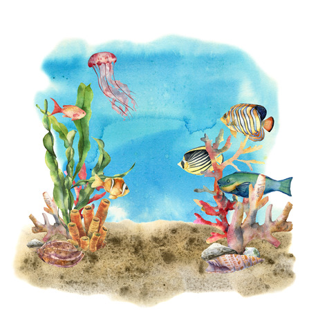 Watercolor coral reef border and propical fish. Hand painted underwater illustration with laminaria branch, fish and shell isolated on ocean background. Nautical illustration for design or print.