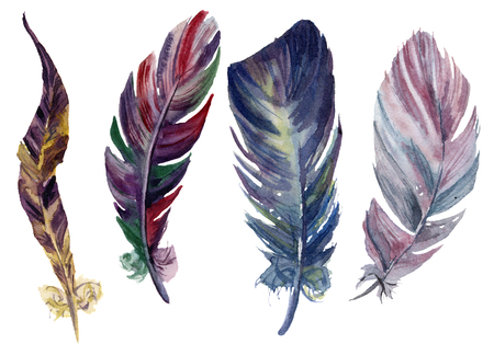 Watercolor bright feathers set. Hand drawn decorative boho elements isolated on white background. Rainbow design objects for design or print. Vintage illustration
