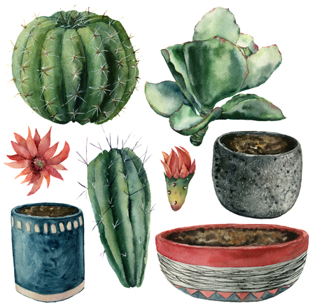 Watercolor cactuses, flowers, pot set. Hand painted cereus, echeveria and echinocactus grusonii with red and yellow flower isolated on white background. Illustration for design, fabric or background.