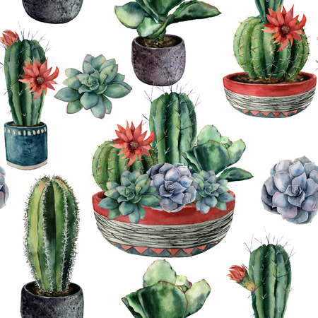 Watercolor cactus seamless pattern. Hand painted cereus, echeveria, echinocactus grusonii with green and blue succulent isolated on white background. Illustration for design, fabric or background.