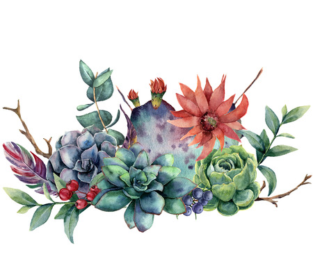 Watercolor floral bouquet with cactus and flower. Hand painted opuntia, succulent, berries, feathers, eucalyptus leaves isolated on white background. Illustration for design, fabric or background.