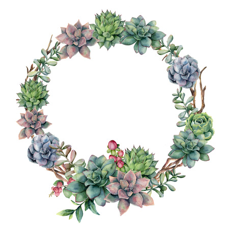 Watercolor succulent and berries wreath. Hand painted succulent, red berry and eucalyptus leaves on white background. Floral illustration for design, print, fabric or background.