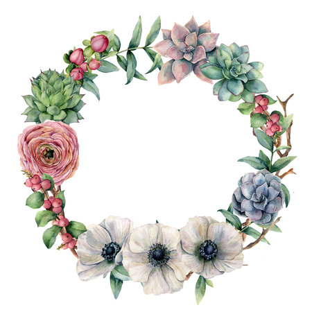 Watercolor floral and berries exotic wreath. Hand painted ranunculus, anemone, succulent, red berry and eucalyptus leaves on white background. Illustration for design, print, fabric or background.
