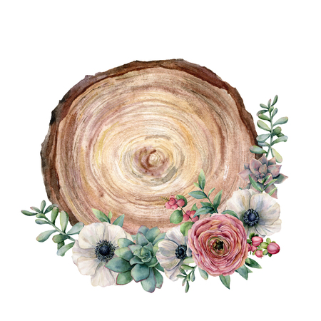Watercolor cross section of a tree with flower bouquet. Hand painted anemone, ranunculus, eucaliptus leaves and succulent isolated on white background. Illustration for design, fabric or background.