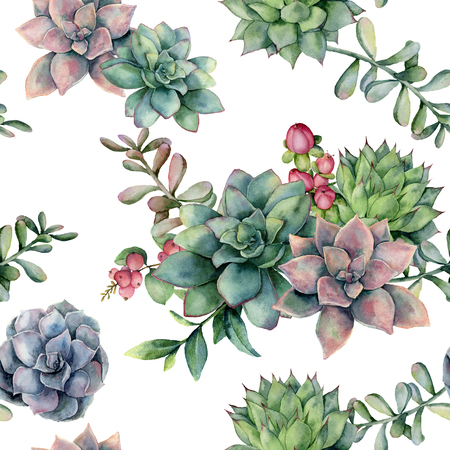 Watercolor seamless pattern with succulent bouquet and red berries. Hand painted flowers, branch and hypericum isolated on white background. Floral illustration for design, fabric, or background.