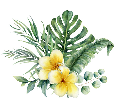 Watercolor floral tropical bouquet with plumeria and silver dollar eucalyptus. Hand painted monstera, palm branch, frangipani isolated on white background. Illustration for design, print, background.