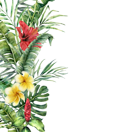 Watercolor tropical border with exotic leaves and flowers. Hand painted frame with palm leaves, branches, monstera, frangipani, hibiscus isolated on white background. Botanical illustration