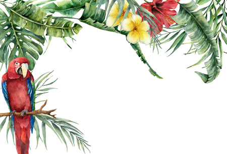 Watercolor tropical banner with exotic flowers, leaves and parrot. Hand painted frame with palm leaves, branches, monstera, frangipani and hibiscus isolated on white background for design or print.