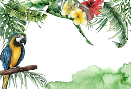 Watercolor tropical banner with exotic leaves, flowers and parrot. Hand painted frame with palm leaves, branches, monstera, frangipani and hibiscus isolated on white background for design or print. Banco de Imagens - 102588281