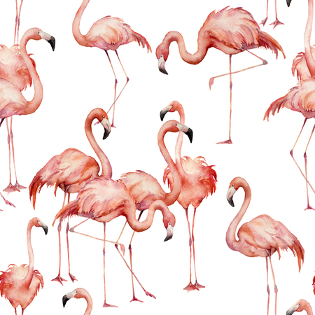 Watercolor flamingo seamless pattern. Hand painted bright exotic birds isolated on white background. Wild life illustration for design, print, fabric or background. Stock Photo