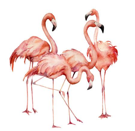 Aquarellflamingogruppensatz. Handgemalte helle exotische Vögel lokalisiert auf weißem Hintergrund. Wilde Lebensillustration für Design, Druck, Stoff oder Hintergrund.