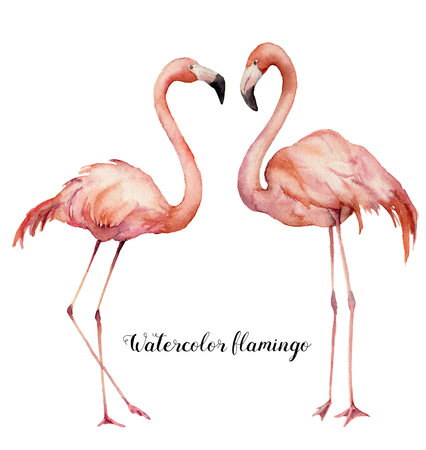 Watercolor two flirting flamingos set. Hand painted bright exotic birds isolated on white background. Wild life illustration for design, print, fabric or background. Archivio Fotografico