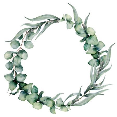 Watercolor floral wreath with different eucalyptus leaves. Hand painted wreath with baby blue, siver dollar eucalyptus isolated on white background. Floral illustration for design, print, background.
